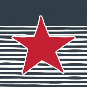 Star and Stripe