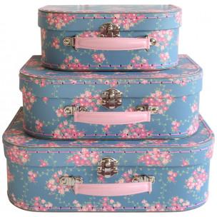 Carry Case Sets